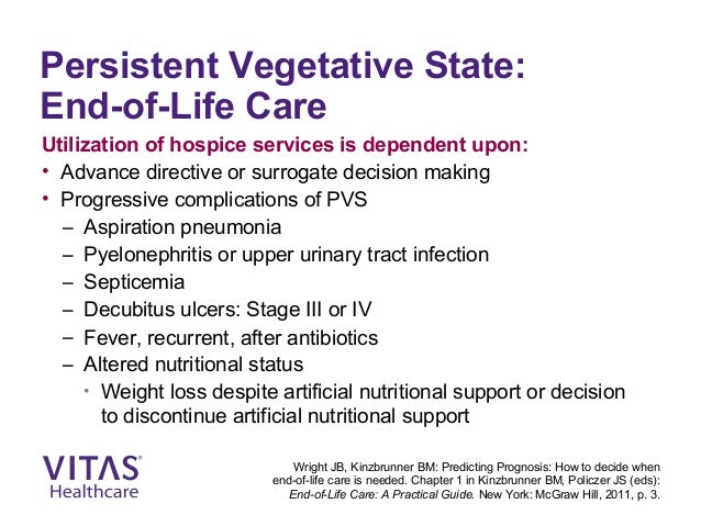 advanced care directive persistent vegetative state example